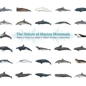 "Cover of the book, ""The Voices of Marine Mammals."""