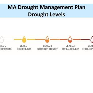 Drought Phases